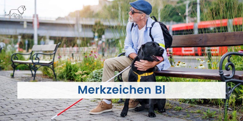Blinder Mensch mit Hund und Merkzeichen Bl im Schwerbehindertenausweis